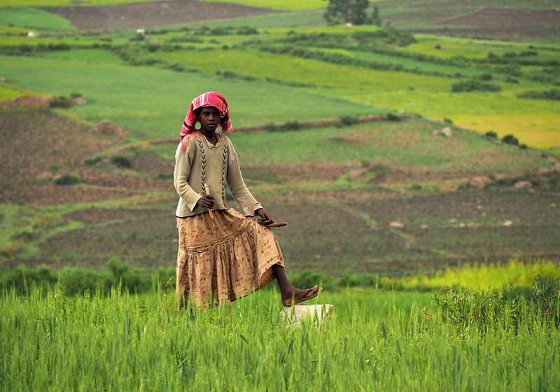 A girl takes a break from minding her goats in the fields outside Axum, northern Ethiopia.