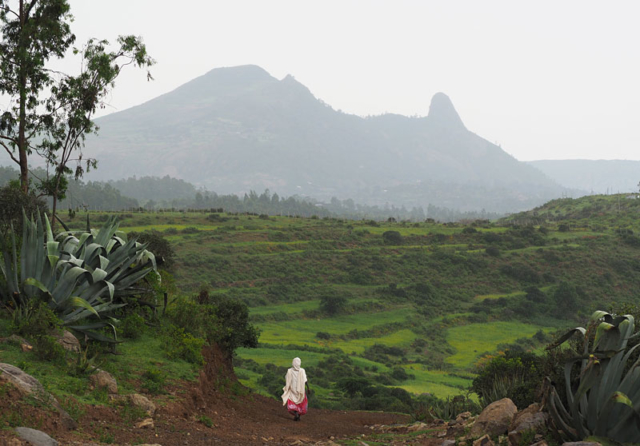 On the path to Axum, northern Ethiopia.