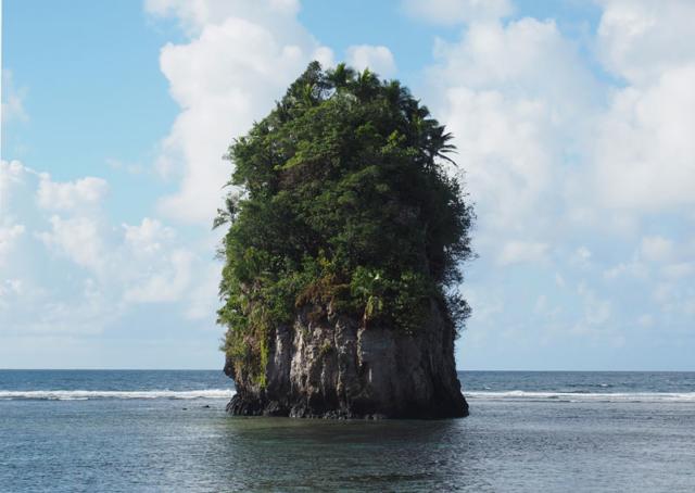 An island at Fatumafuti popularly known as Flowerpot Rock.