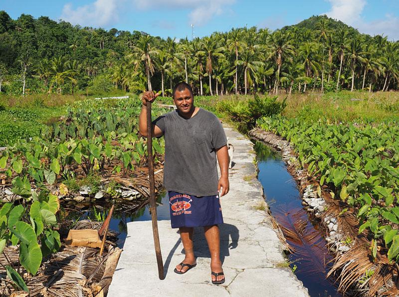 Peter Taliva'a, a chief on Aunu'u Island, in his taro plantation.
