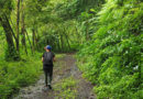 Another Samoa: Tramping in the tropics