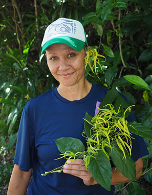 Paula Stevenson-McDonald with flowers from the moso'oi tree