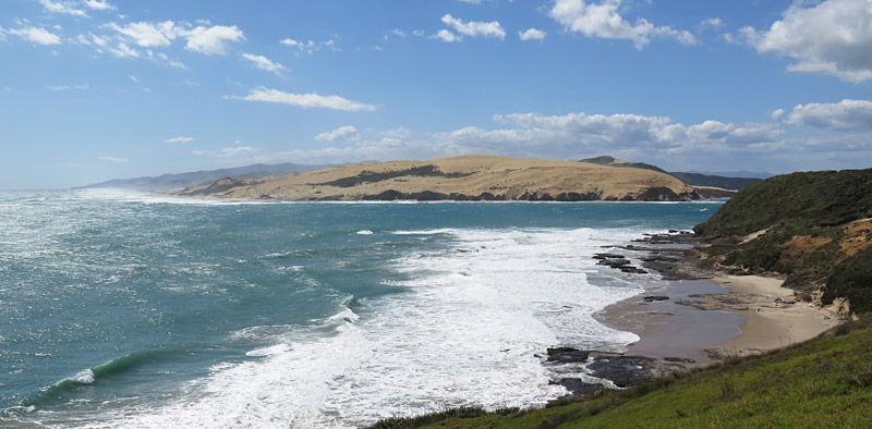 Looking back towards the dunes on North Hokianga Head