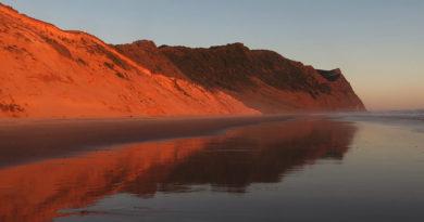Walking New Zealand's Hokianga Coastal Track