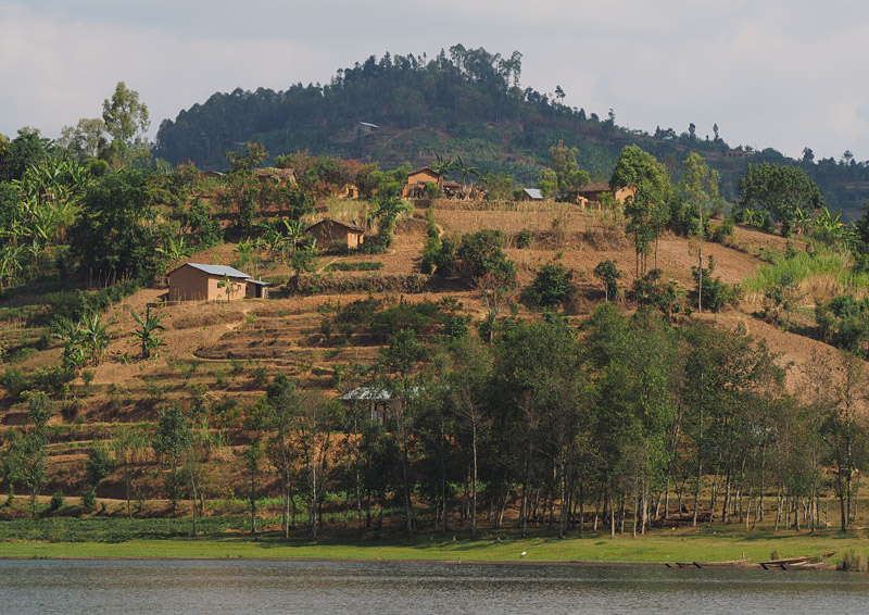 The hillsides around Lake Ruhondo are intensely terraced and cultivated