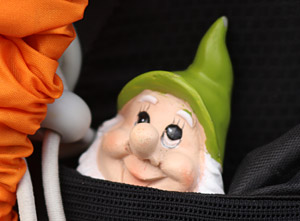 A stowaway named Gnomad.