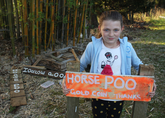 MAY: Skye Stevenson, 9, with her roadside pony poo stand in Waipapa after it was trashed by vandals. Photo: Peter de Graaf