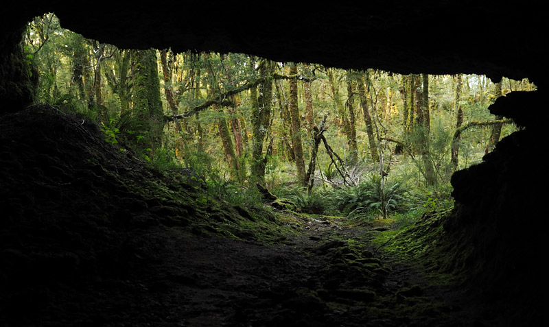 View from a cave in the Enchanted Forest, Gouland Downs