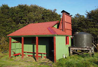 Gouland Downs Hut and resident weka