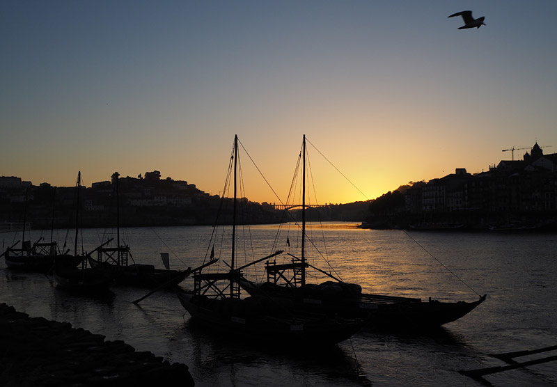 Rabelo in the Rio Douro at sunset