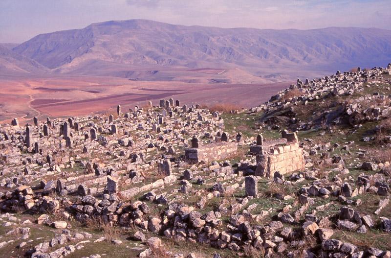 Gravestones in a 14th century cemetery at Hasankeyf, in southeastern Turkey