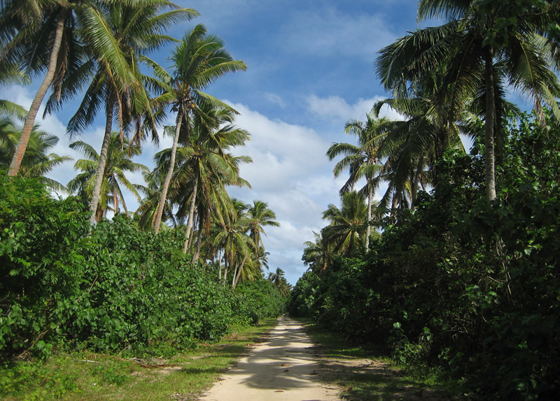 A busy main road on Lifuka Island