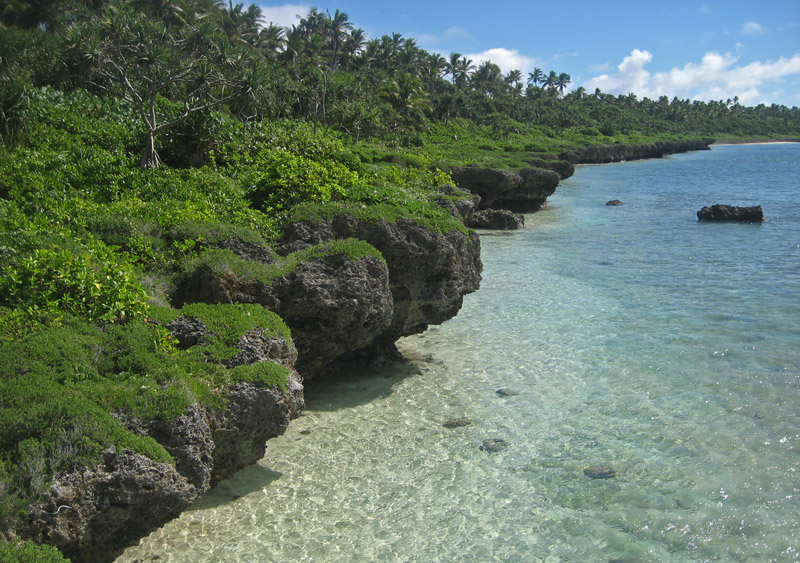 Coral shore on the east coast of Lifuka Island