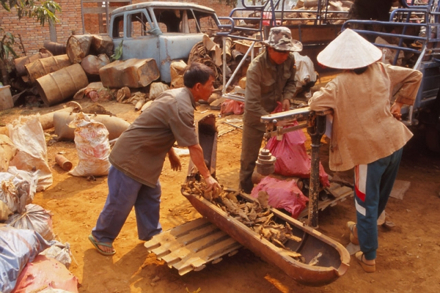 People risk their lives to collect war scrap for 13 cents a kilogram