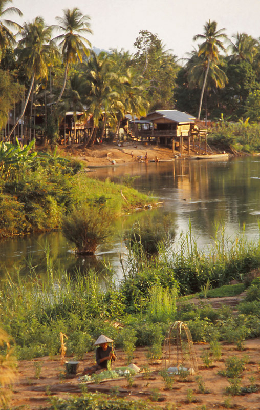 Scenery in Si Phan Don (The Four Thousand Islands) in the Mekong River