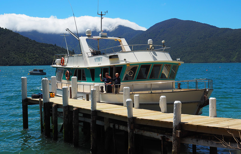 The crew waves goodbye from the wharf at Punga Cove.