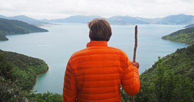 Walking the Queen Charlotte Track (the easy way)