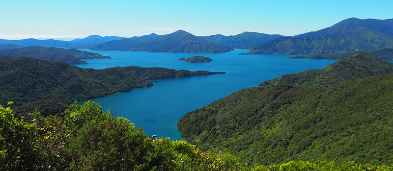 View over Queen Charlotte Sound from the highest point on the trail.