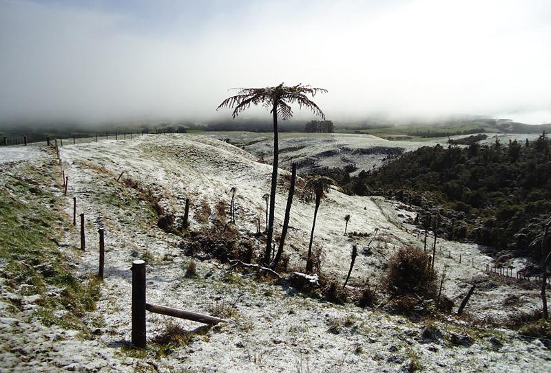 Snow blankets farmland at Tutamoe in August 2011
