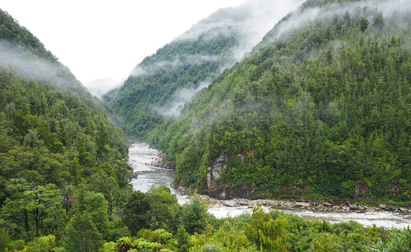 The Mōkihinui River gorge seen from Specimen Point.