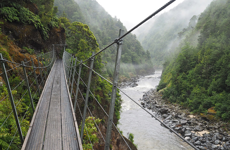"""Suspension bridge across one of the """"Suicide Slips"""" in the Mōkihinui River gorge."""