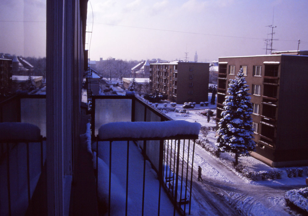 View from my window on Jindřicha Plachty Street in České Budějovice