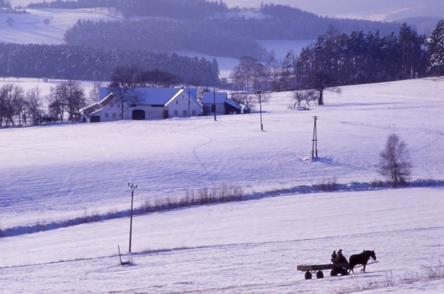 A horse-drawn cart plods across a snowy landscape in South Bohemia
