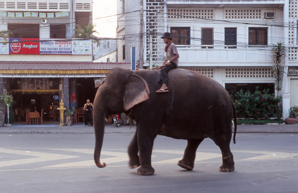 One man's answer to petrol prices and traffic congestion in Phnom Penh