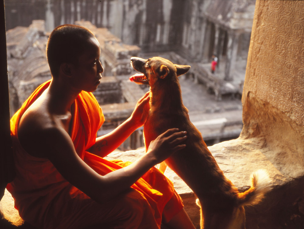 A young monk and his companion at the highest level of Angkor Wat